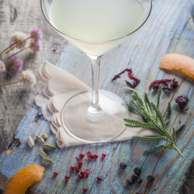 GIN ACCESSOIRES